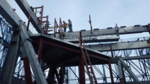 Spider on WTC 3