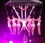 Equipment failure causes Circus Accident